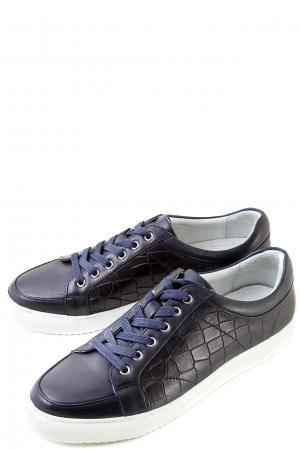 Полуботинки на шнуровке ALBA. Цвет: темно-синий