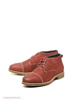 Ботинки Barcelo Biagi. Цвет: бордовый