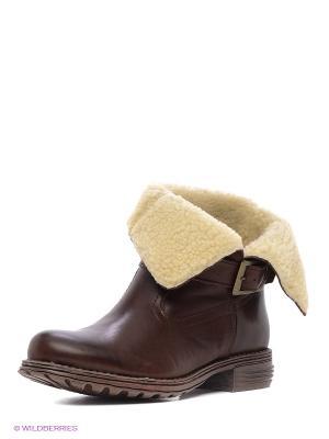 Ботинки Francesco Donni. Цвет: коричневый