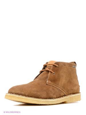 Ботинки PEPE JEANS LONDON. Цвет: коричневый
