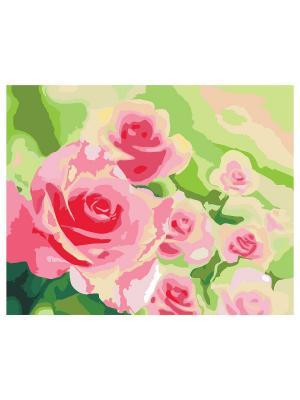 Холст по номерам Розы в саду, 50см КРЕАТТО. Цвет: зеленый, оранжевый