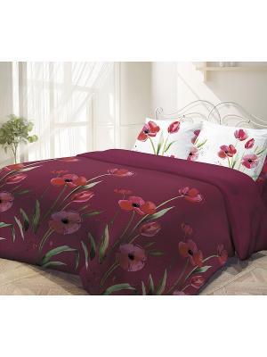 Комплект постельного белья, Маки Волшебная ночь. Цвет: красный