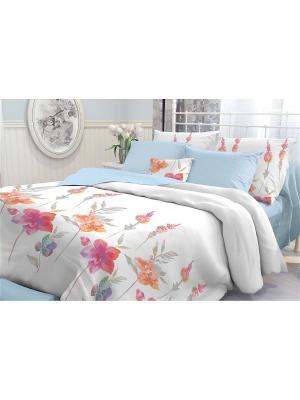 Комплект постельного белья 2,0-сп, VEROSSA, наволочки 50*70 см, Color Flowers Verossa. Цвет: голубой, белый