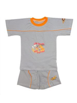 Шорты и футболка МИКИТА. Цвет: серый, оранжевый