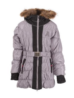 Куртки Arista. Цвет: темно-серый