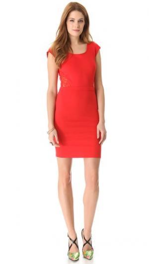 Кружевное платье с открытой спиной Limelight Madison Marcus. Цвет: томатный