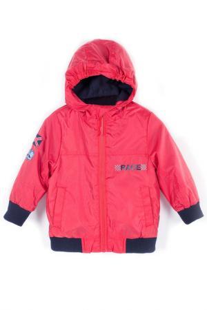 Куртка Coccodrillo. Цвет: красный, синий
