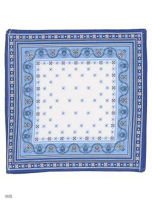 Набор платков носовых мужских Римейн. Цвет: синий, белый