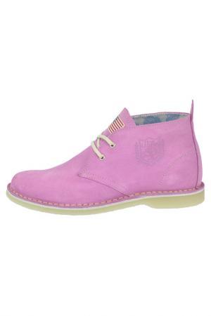 Ботинки U.S. Polo Assn.. Цвет: lilac