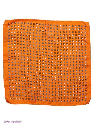 Платок-паше Troy collezione. Цвет: оранжевый
