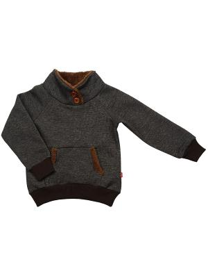 Свитшот Mini Maxi. Цвет: темно-коричневый