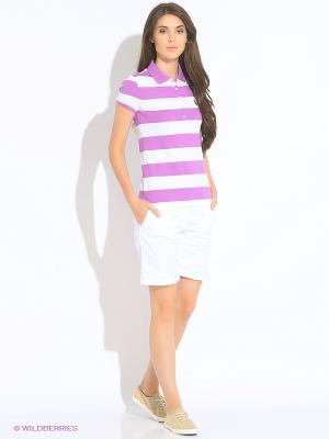 Футболка-поло U.S. Polo Assn.. Цвет: фиолетовый