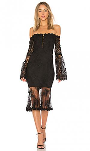 Платье миди octavia NICHOLAS. Цвет: черный