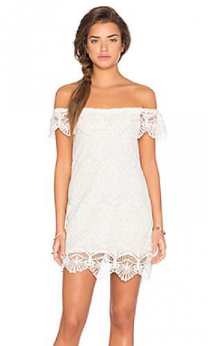 Мини платье seashell lace off shoulder Nightcap. Цвет: белый