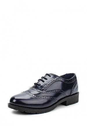 Ботинки Piazza Italia. Цвет: синий