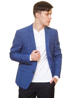 Пиджак Daniel Diaz. Цвет: синий, голубой, лазурный