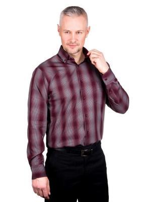 Рубашка GREG. Цвет: бордовый