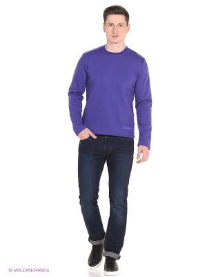 Свитшот DODOGOOD. Цвет: фиолетовый