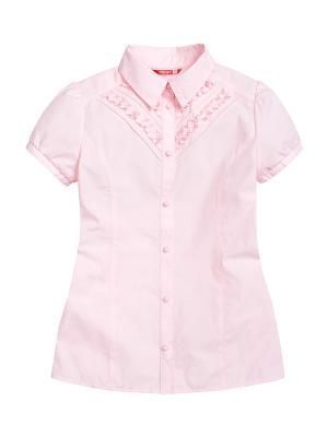 Блузка PELICAN. Цвет: розовый