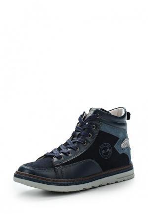 Ботинки Зебра. Цвет: синий