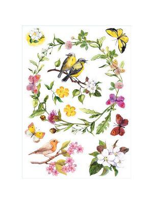 Акварельные птицы DECORETTO. Цвет: сиреневый, желтый, зеленый