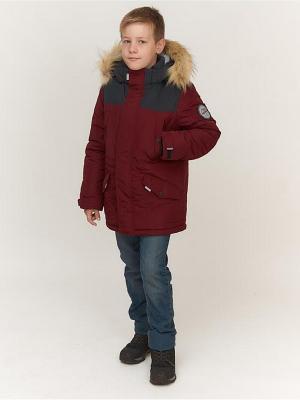 Куртка для мальчика AVESE. Цвет: бордовый
