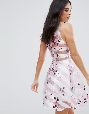 AX Paris Короткое приталенное платье с цветочным принтом и сетчатыми вставками. Цвет: кремовый