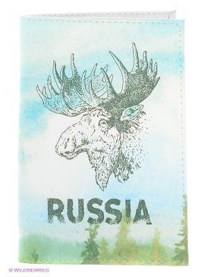 Обложка для паспорта Mitya Veselkov. Цвет: голубой, серо-зеленый