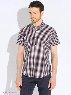 Рубашка Tommy Hilfiger. Цвет: черный