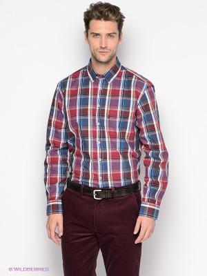 Рубашка ARROW. Цвет: голубой, бордовый, синий