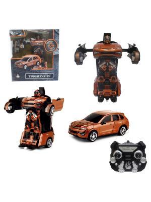 Робот на р/у 2,4GHz, трансформирующийся в машину, оранжевый 1Toy. Цвет: серый