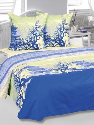 Комплект постельного белья Шанхай Тет-а-Тет. Цвет: синий