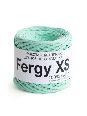 Пряжа Fergy XS. Цвет: светло-зеленый