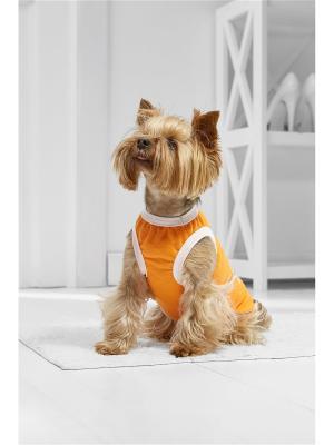 Жилет Косточка на удачу для миниатюрных и маленьких пород собак весом 2-6 кг, длиной спинки 25-30 см Nothing but Love. Цвет: оранжевый, белый, бирюзовый