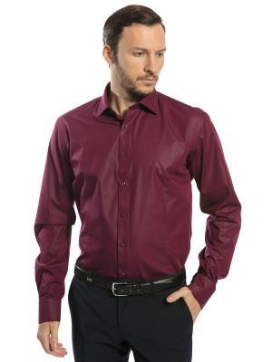 Рубашка под костюм GroStyle. Цвет: бордовый