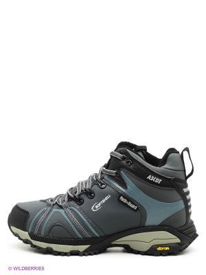 Мембранная обувь Ascot. Цвет: серый