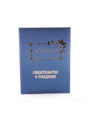 Именная обложка для свидетельства о рождении Анатолий Dream Service. Цвет: синий
