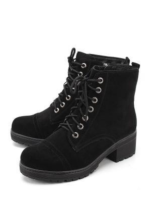 Ботинки Polann. Цвет: черный