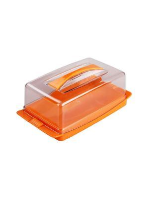 Маслёнка Лакомка Альтернатива. Цвет: оранжевый, прозрачный