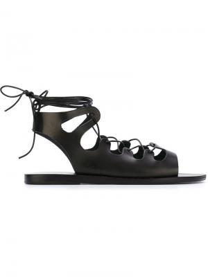 Сандалии-гладиаторы Ancient Greek Sandals. Цвет: чёрный