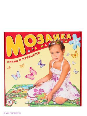 Мозаика для малышей. Принц и принцесса Дрофа-Медиа. Цвет: красный, желтый