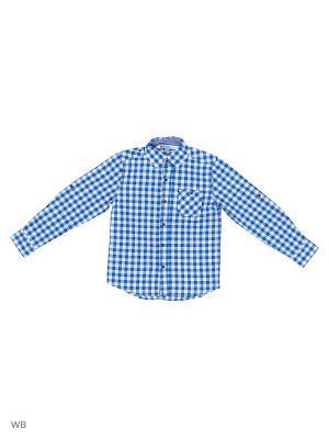 Рубашка Modis. Цвет: голубой, белый, черный