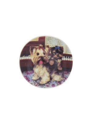 Тарелка декоративная Йорк в интерьере Elan Gallery. Цвет: черный, голубой, коричневый