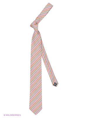 Галстук Alex DANDY. Цвет: белый, розовый