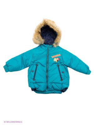 Куртка Бимоша. Цвет: бирюзовый