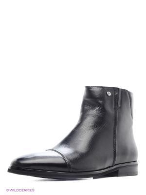Ботинки Dino Ricci. Цвет: черный