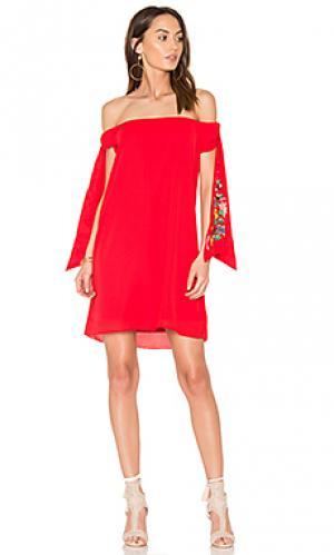 Платье engleberta VAVA by Joy Han. Цвет: красный