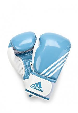 Перчатки боксерские adidas Combat. Цвет: голубой