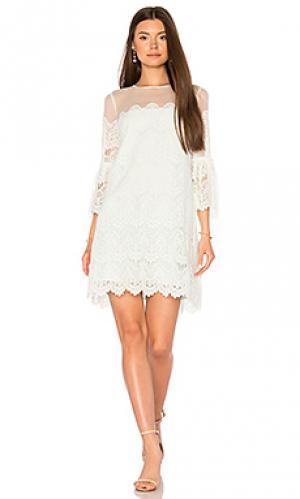 Платье adelina BB Dakota. Цвет: мята