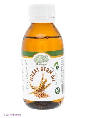 Масло зародышей пшеницы 125 мл Huilargan. Цвет: желтый